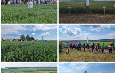 Ден на пшеницата гр. Лозница, 11.06.2021